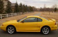 98-Cobra-Mustange-Pic-1